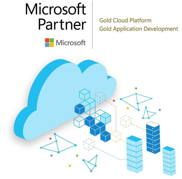 Microsoft Solution Partner